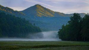 Cataloochee Valley Morning mist